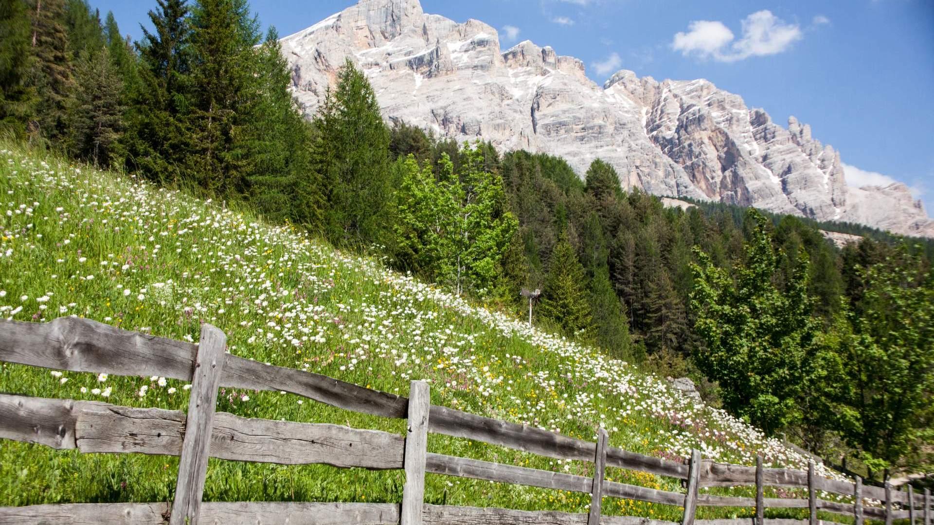 Apartments Alpine Mountain Chalet - San Vigilio in South Tyrol
